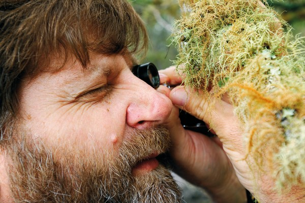 Few lichens have common names, and lichenologists such as Rick Kooperberg are often reluctant to identify them without precise laboratory tests. The taxonomy is based on the type of fungi in the lichen, but a trained eye aided with a 10x loupe can readily identify the major families.