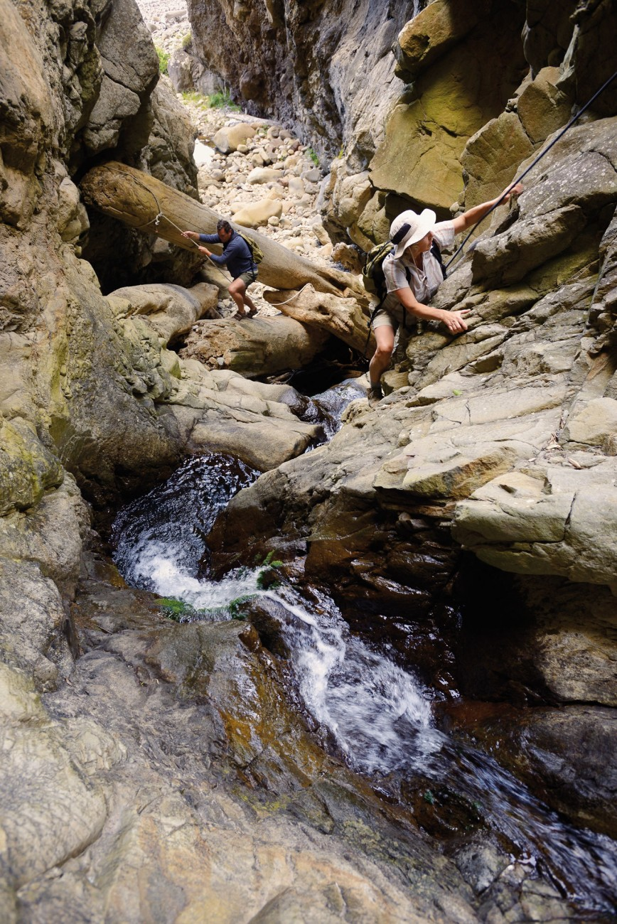 Sue Maturin, Forest & Bird's Otago/Southland Field Officer, and Lyndon Perriman, the DOC ranger at the Taiaroa Head royal albatross colony, climb a waterfall in Orau Gorge, one of the many deeply cut gorges on Little Barrier Island. Water-blasted kauri logs jammed between the rock walls provide both obstacles and bridges in this extreme environment. The fortress-like topography of the island may have contributed to the survival of the birds while wild cats were still present on the island.