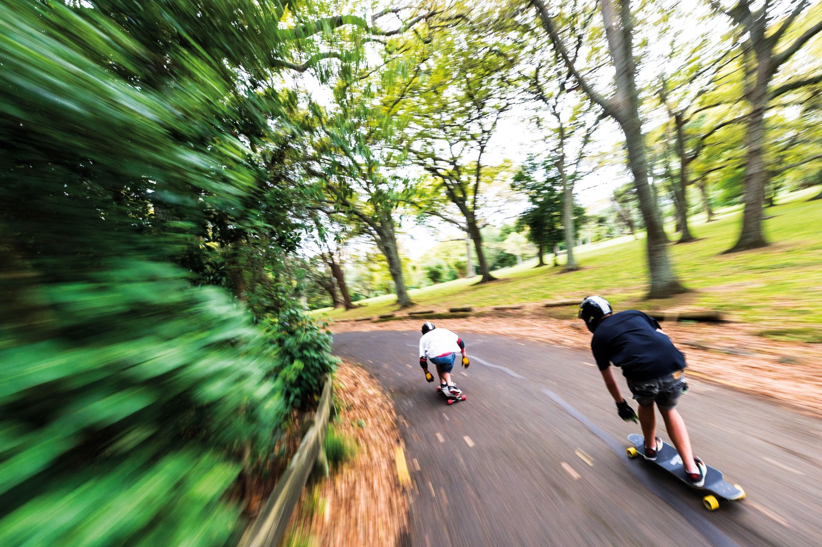 Longboarders Josef Scott (leading) and Max O'Neill head down Lovers Lane, a quiet tributary of asphalt branching off the main Domain Drive. From this side road a series of bush tracks wind through densely wooded groves and gullies that belie the park's proximity to the central city.