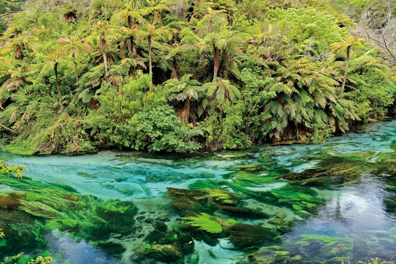 The limpid waters of Blue Spring, near Putaruru, are among the clearest, purest in the world; proof that the water flowing across New Zealand—and particularly beneath it—is still relatively unspoiled. Rivers flowing out of conservation lands remain in good health, and trampers can still scoop a handful of healthy water from many streams. We are, after all, an aquatic nation: to be a Kiwi is to be in, on and around water. The fouling of the last quarter century can be halted, even turned around, say water managers. But first, minds must be shifted, new priorities set, and every voice heard.