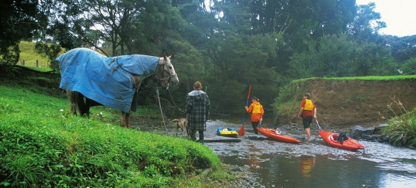 Near Palomino Drive, Henderson Valley, a resident walks her horses and dogs down to the Opanuku—too shallow here for uninterrupted paddling.