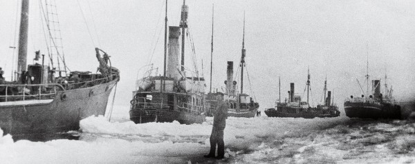 Norwegian company Rosshavet carried out whaling in the Ross Sea from the summer of 1923/24 until 1932/33, taking a total of 10,587 whales. The factory ship Sir James Clark Ross (above), accompanied by five chasers, grinds through pack ice to the whaling grounds in 1925—a 735 km journey that took 38 days. Rosshavet established a large repair base in Paterson Inlet, Stewart Island, where the chasers remained for the winter while the factory ships transported the oil to the northern hemisphere.