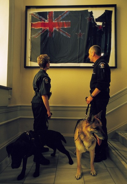 Aviation Security Service personnel Glenn Turner (with German Shepherd Kim) and June Rippon (with Labrador Fiebie) pause during a check of Parliament's buildings on the day of the state opening to examine a tattered New Zealand flag recovered from the debris of the World Trade Centre in New York.