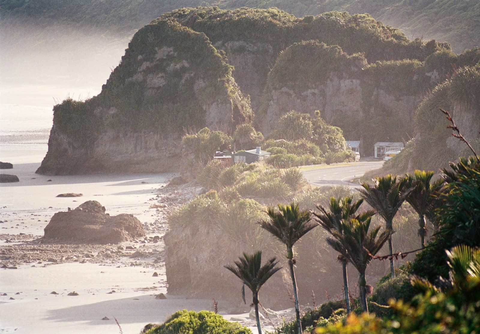 The landscape near Fox River has quintessential West Coast elements: limestone bluffs, a deserted beach, a handful of cribs and a grove of nikau. Though near the southernmost extent of their range, nikau here flourish in the warm, moist climate.