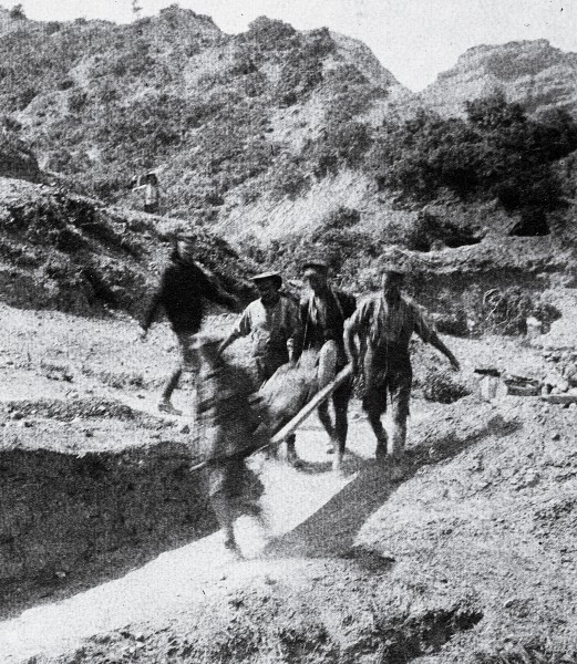 Wounded at Anzac were carried from the hills to the beach either by stretcher or donkey, their carriers dodging sniper fire and shrapnel.