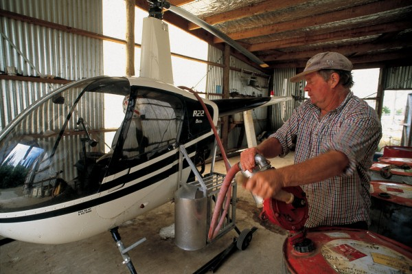 Colin Nimmo's predecessors relied on mules, horses and shanks's pony to get around the hill country of the middle Clarence, but Colin does much of his farm work using a helicopter. He even takes his dogs aloft—in a cage bolted to one of the skids. It is dry country, much of it infested by sweet briar, and the stocking rate refl ects the poor pasture quality: less than a stock unit per hectare.