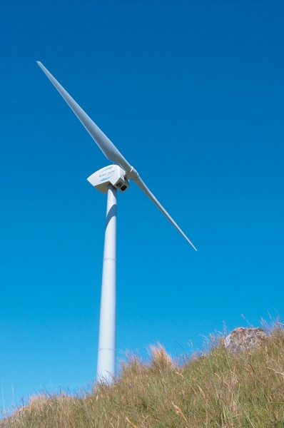 NZ's first turbine above Brooklyn in Wellington has run at maximum capacity for 48 per cent of the time over the last eight years—an indication of the steadiness of our wind, because a comparable international figure is just 23 per cent. With winds like this, we can expect many more wind farms.