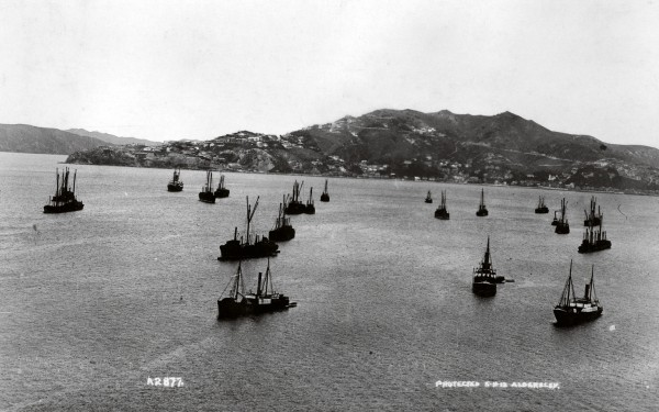 Unable to unload or load because of the strike, dozens of ships waited at anchor in the harbour and supplies of imported food ran low.