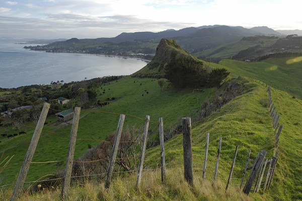From the pastures of farmer, Anglican minister and kaumatua John Klaricich, the settlements of Omapere (centre left) and Opononi (left) straggle along the curving shoreline.