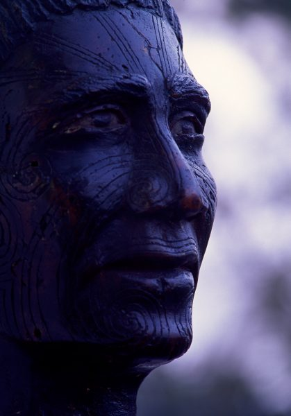 Carved gum bust, said to be of Hokianga chief Tamati Waka Nene. was one of a series carved in the early 1900s. Gum heads were popular curios, but they were usually made by pouring melted gum into a mould, and were Jess attractive than the carved variety.