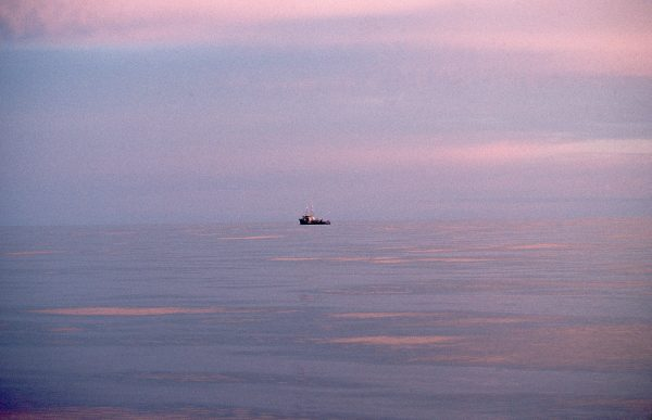 Trolling for tuna on a calm sea at dawn. Such moments compensate for the harshness of much of the seafaring life.