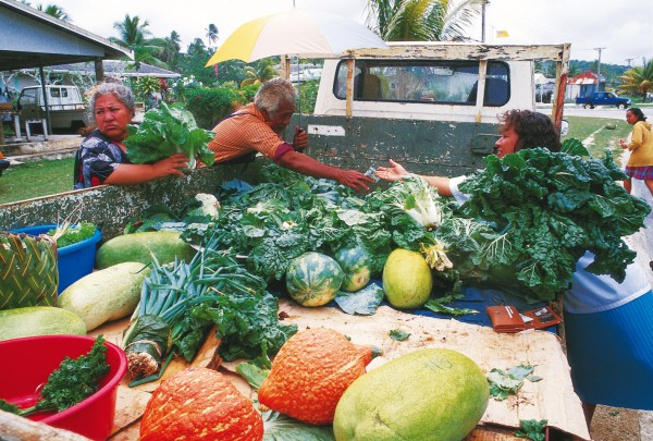 Locals buy hard-to-grow vegetables at the island's weekly market. The Rock is no gardener's paradise, but with the freighter service being both unpredictable and unable to supply food as fresh as local produce, self-sufficiency is a challenging necessity.
