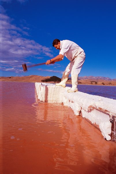 """Brine man"" Trevor Gilmore cracks salt crystals from a gate in Dominion Salt's evaporation complex at Lake Grassmere so that a pond can be drained. The red colour comes from microalgae which become red in the very high salt concentrations, and from the tiny shrimp Artemia (commonly known as the ""sea monkey"") which inhabits brine ponds."