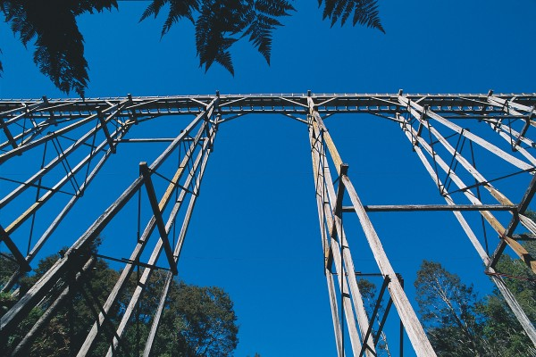 The 125-metre-long viaduct across Percy Burn is one of four trestle bridges built in the 1920s to enable logs from the eastern region of Waitutu to be hauled to the Port Craig sawmill. At its height, the mill employed 150 men, but in 1928, a victim of economic recession, the operation was closed.