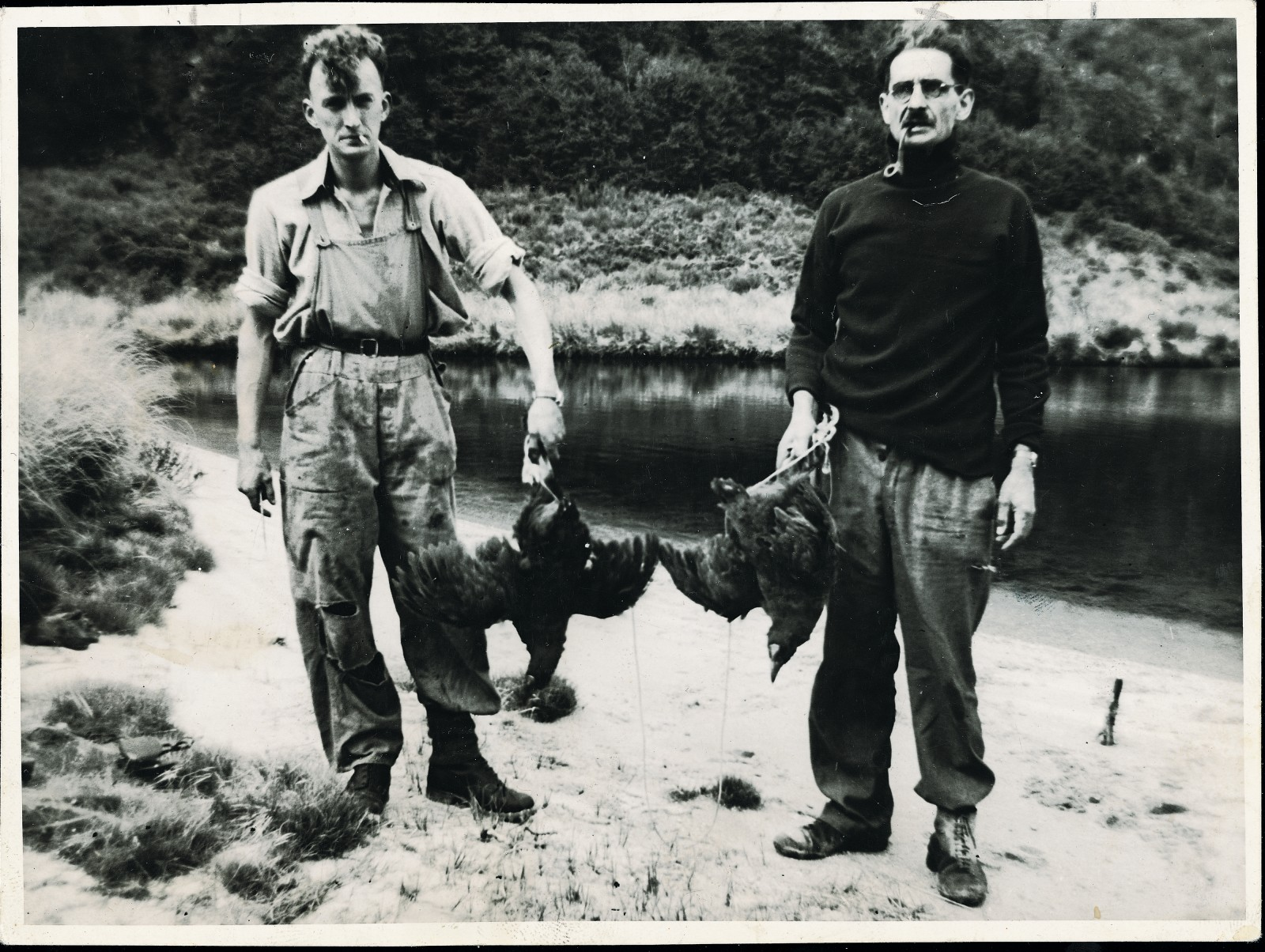 When Dr Geoffrey Orbell, a keen ornithologist and hunter with a lifelong interest in finding a living takahe, captured movie footage of the species and came up with images of himself and fellow-hunter Neil McCrostie nonchalantly holding a pair of live takahe in 1948, the discovery made world headlines. Along with cattle, fat lambs and Foveaux Strait whalers, the takahe was placed on stamps (above) commemorating the centennial of Southland in 1956.