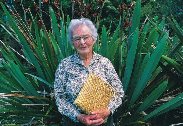 Concerned at the disappearance of these traditional cultivars, Rene Orchiston of Gisborne established a collection of more than 50 flax varieties sourced from over much of the North Island, which she later donated to the government. Over the past decade the collection has been widely planted by Landcare Research.