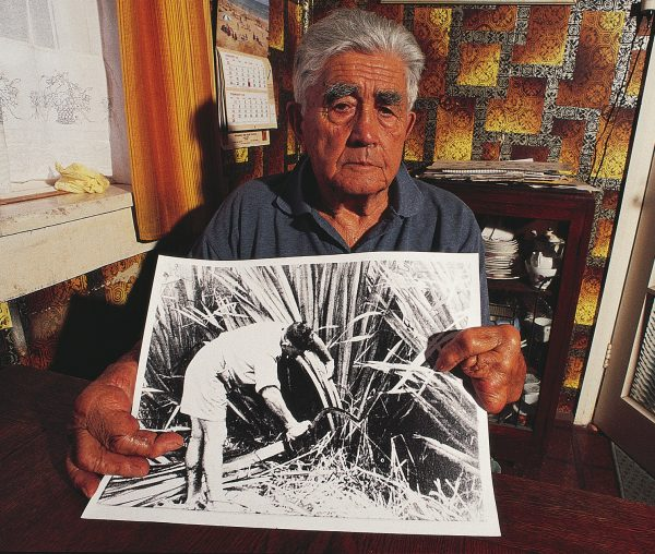 Delph Halidone, now 82, left school at 14 to work in the flax mills of Foxton, long the centre of New Zealand 's flax-stripping industry. The day before he was to be called up for World War II, he lost five fingers in a stripping machine. The photograph he holds show him harvesting flax 50 years ago in nearby Moutoa Swamp.