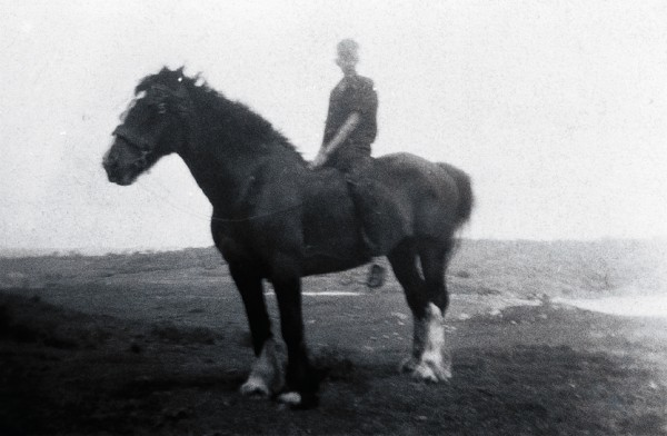 """""""Big Charlie"""" Yunge (above) was one of a handful of Stewart Islanders who tried their luck with a shovel and pan during the 1920s, but by then the main enterprise at Port Pegasus was fishing, not prospecting. Among the items left behind after the mining boom was a pair of draught horses. One of them lived in the tussock tops of the Tin Range for several years, using a cave for a stable (below)."""