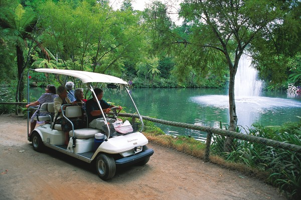 "An electric cart operated by Pukekura's ""Friends of the Park"" enables the less mobile to enjoy the park's many vistas—although for most visitors a slew of eels would probably not be high on the list of attractions."