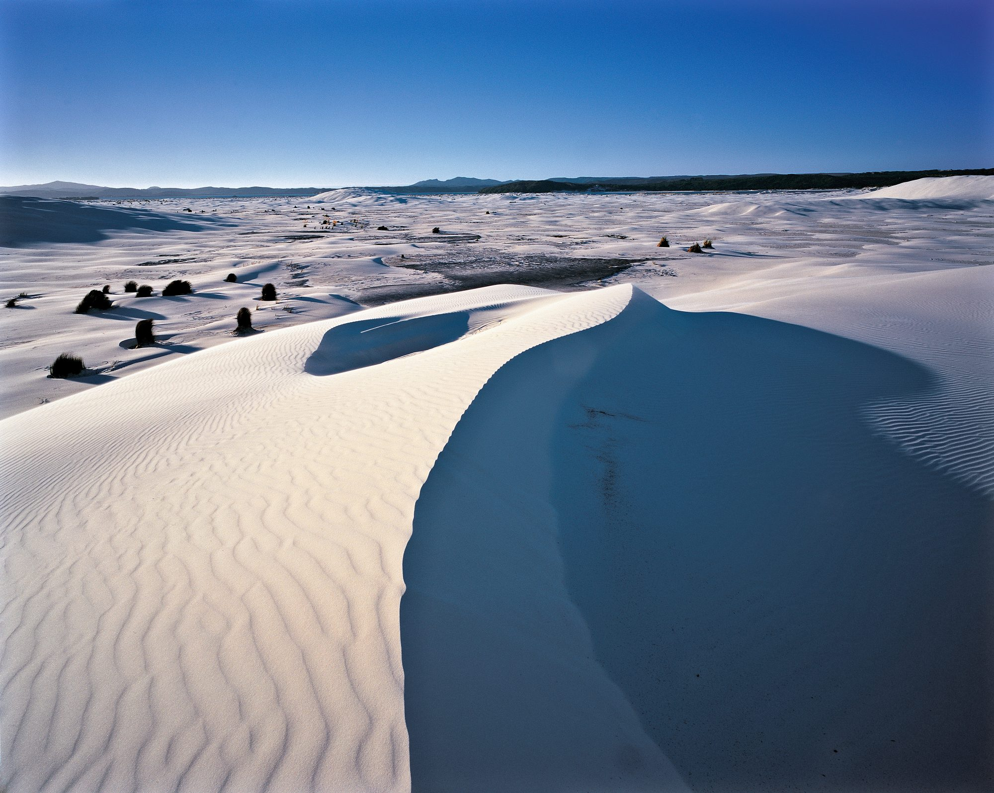 Dunes  the waterless sea   New Zealand Geographic