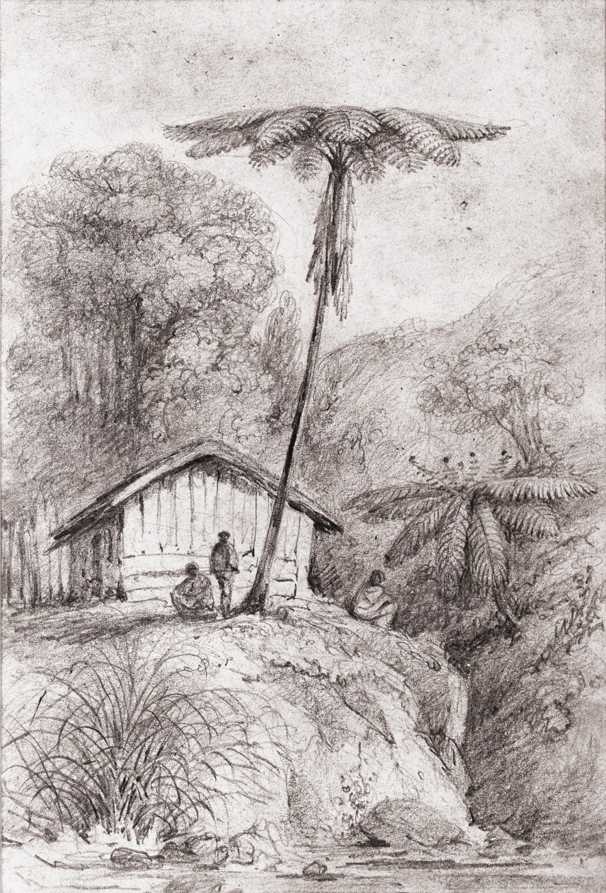 Once in the new colony, Swainson forsook elaborate illustration-there was little demand or money for such lushness, and requisite artistic materials were not readily available. He reverted instead to simple pencil sketches of local scenes. Hundreds of these survive, providing a valuable record of early, pre-photographic Wellington.
