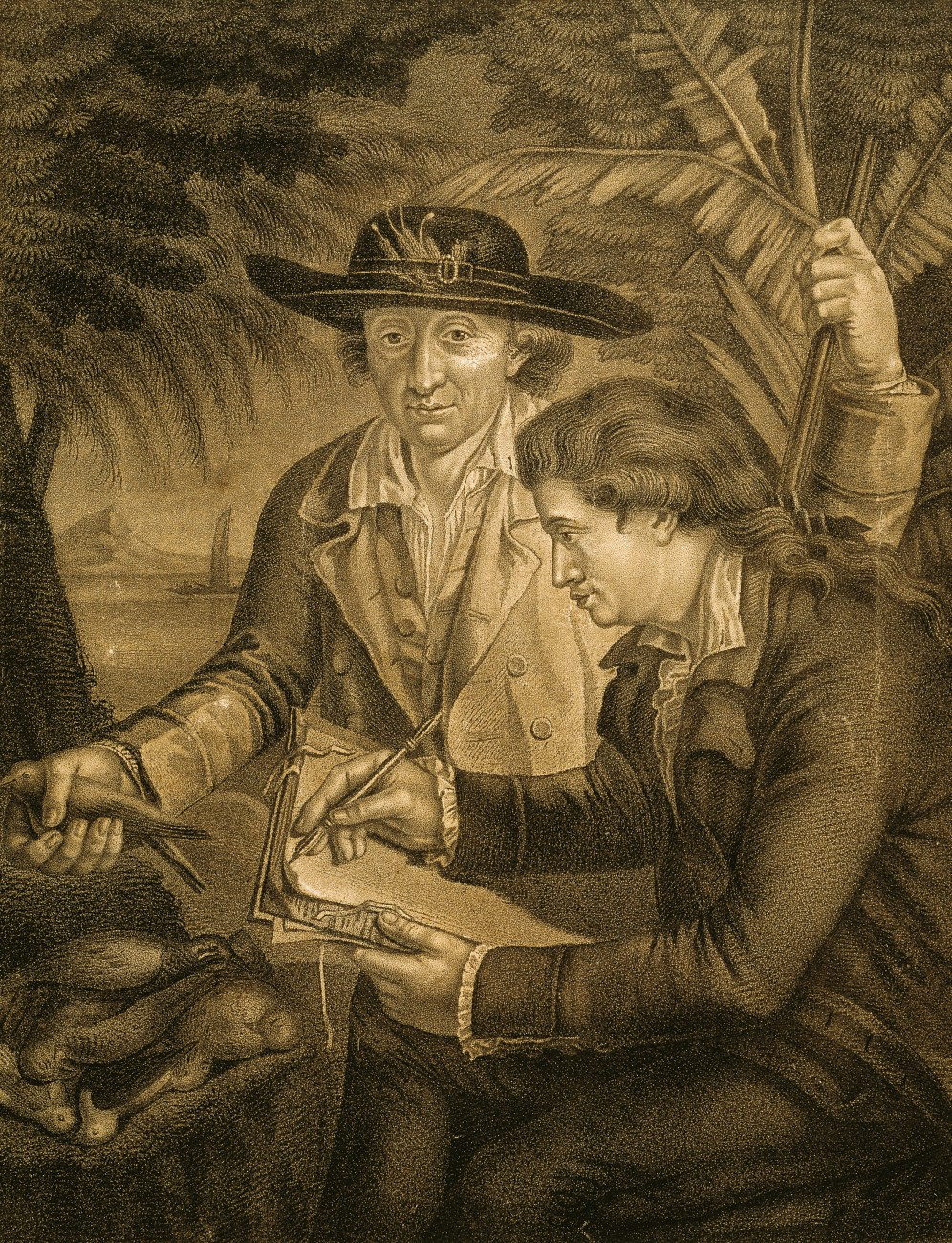 Johann Reinhold Forster and his 18-year-old son Georg were Prussian-born naturalists and illustrators who travelled aboard Cook's second voyage, after Banks withdrew at the last minute. Both men published detailed accounts of the three-year voyage on their return to England.