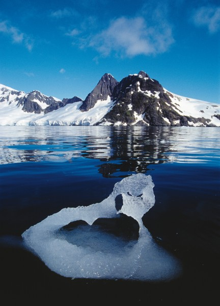 Ice, the scourge and glory of Antarctica, assumes myriad magical forms as it melts back into the water.
