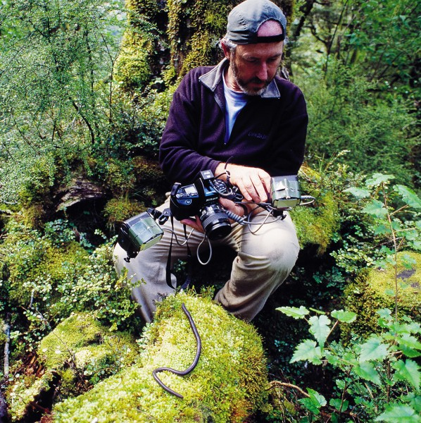 """The small, the unusual and the insignificant have always appealed to me,"" says Dunedin-based photographer and film-maker Rod Morris, here photographing a native earthworm in Fiordland."