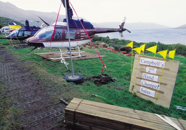 """Easy to park,"" ""Low kms,"" ""One careful owner""—the helicopters that have done such sterling work are put up for sale as a party prank. Yet what they have been about is no trivial matter. Many endemic species that share Campbell Island with this young elephant seal (bottom) face a much brighter future thanks to the efforts of the rat-busting team."