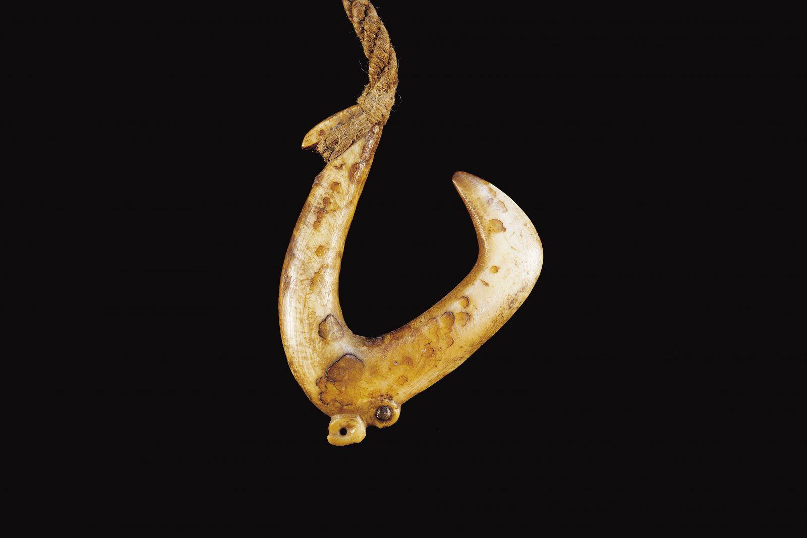 These were used to target large-mouthed bottom-dwelling fish such as snapper and blue cod. Because of the thickness of the bone, bait could not be threaded onto the hook as with a modern metal hook, and had to be tied in place with a short piece of twine attached to a small hole, groove or protrusion at the lower bend of the shank. (65 mm length)