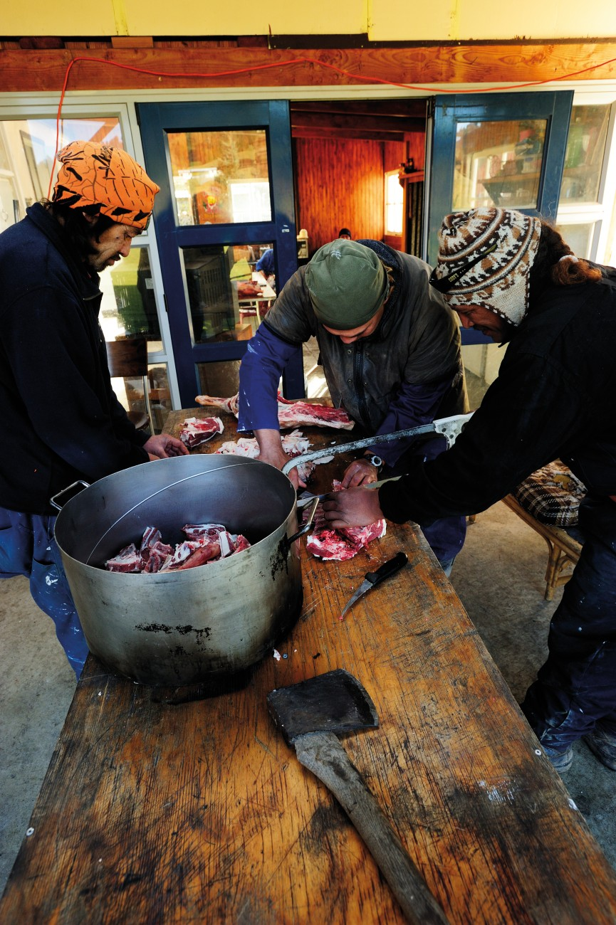 """Axes, hacksaws and boning knives are brought to the task of butchering meat for the traditional boil-up—a soup featuring meat bones, puha and potatoes, the mainstay of marae meals. Many returnees from the city find a comfortable role working 'out the back' of the marae, while their cousins with a better grasp of language and protocol take a more visible stance at the front. One role is not seen as more important than the other. A proverb says, """"Ko te amorangi ki mua, ko te hapai o ki muri""""—without the back, the front won't function."""
