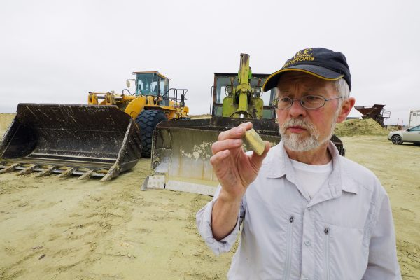 Professor Ewan Fordyce examines a piece of fossil whale bone at a North Otago quarry. In 1987, while researching on a remote Antarctic island, Fordyce discovered the world's earliest-known mysticete (baleen whale) fossil, Llanocetus denticrenatus. A replica of this find is now on display in the Smithsonian National Museum of Natural History in Washington.