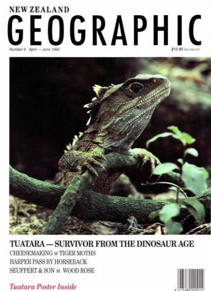 Tuatara A Survivor From The Dinosaur Age