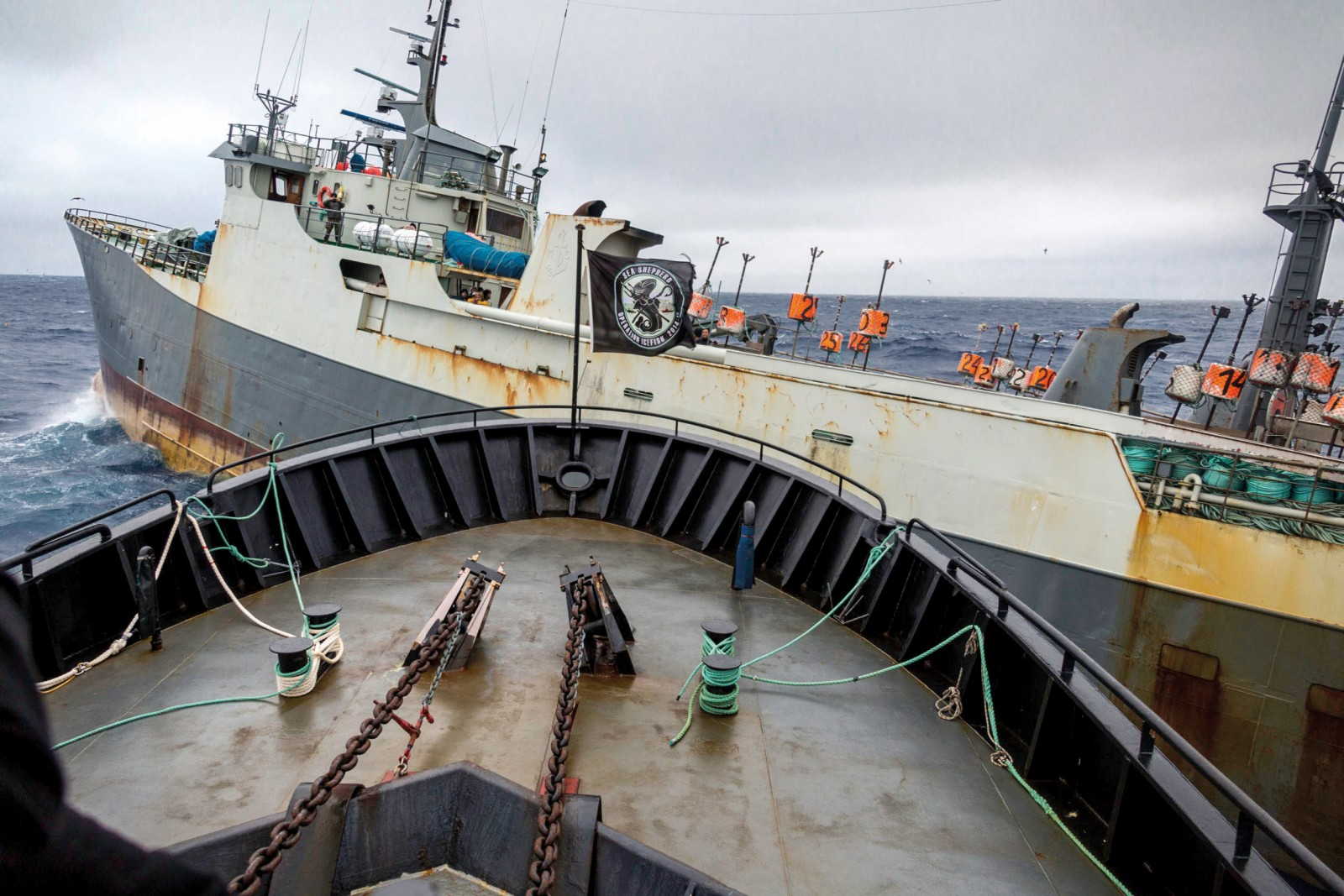 The illegal fishing vessel Thunder takes an aggressive turn into the course of the Bob Barker in the Southern Ocean, below,