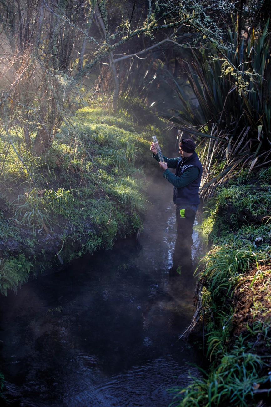 Ecologist Bruno David checks the water quality in Hamilton's Bankwood stream, where scientists recently recorded the first known wild spawning site for giant kōkopu. Migratory species come from the ocean, so even if local populations are reduced, new arrivals can soon bolster numbers. Non-migratory species, however, are at much greater risk from landscape modification and other threats.