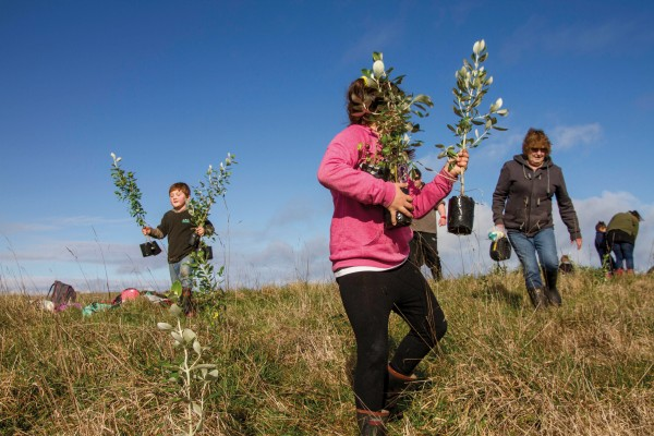 Environmental improvement is firmly on the island agenda, with big turnouts to Department of Conservation tree-planting days. Here children from local schools and kōhanga reo help revegetate Henga Scenic Reserve, on the western coast of Chatham Island.