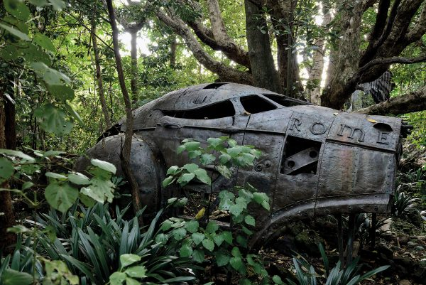 There are many surprises in the rock forest, not least this remains of an aircraft that appears to have nose-dived into the woods and ground to a halt under the limbs of a puriri where it continues to gracefully decompose in front of an audience of clivia and kawakawa. It is Rome, 2002, a copper sculpture by New Zealand artist Desmond Ford and part of the sculpture collection installed in the 0.4-hectare rock-forested grounds of Rannoch, the Epsom home of arts-patron Sir James Wallace. The mingling of modern art and ancient forest at Rannoch is shared with numerous visitors who attend the many functions hosted at the house, at least some of whom cannot fail to be curious, if not seduced, by the setting.