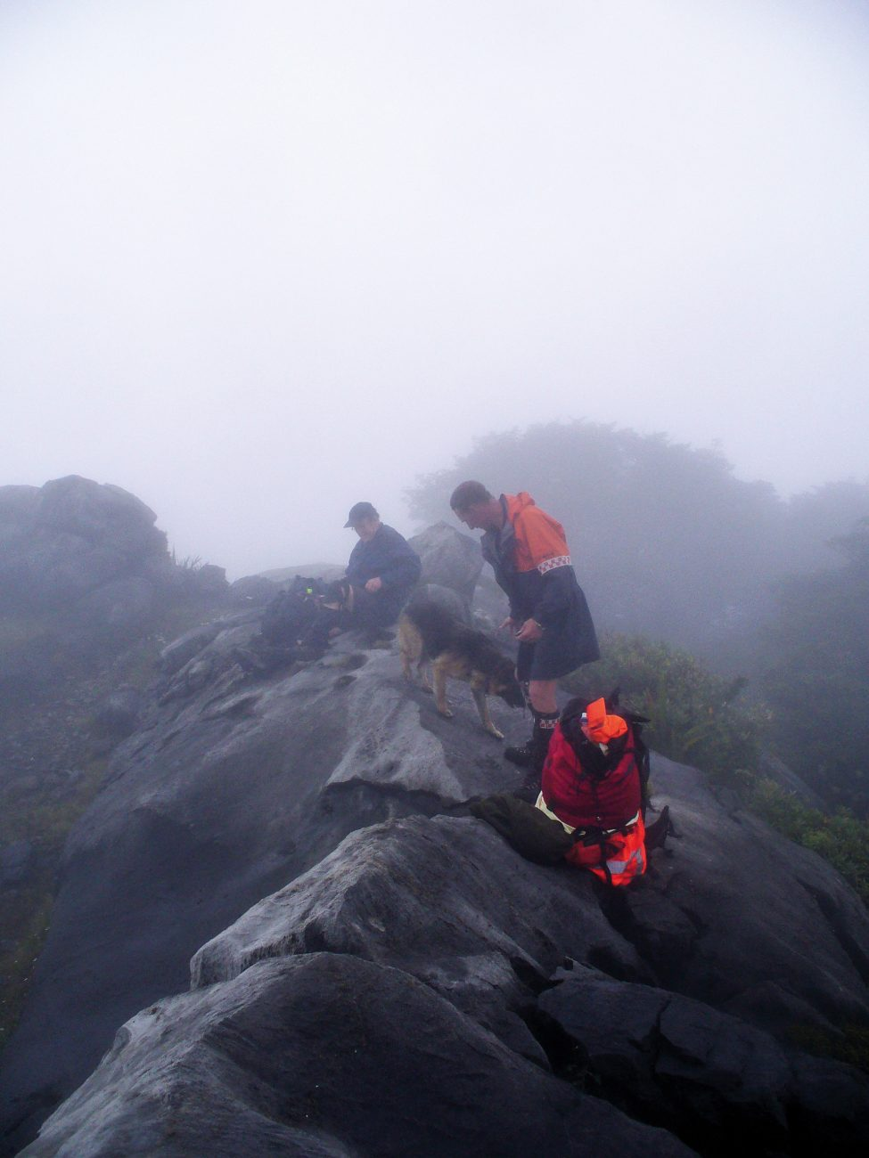 On Thursday December 27, 2012, persistent misty conditions prevailed during the search. At times the volunteers could barely see an arm's-length in front of them.